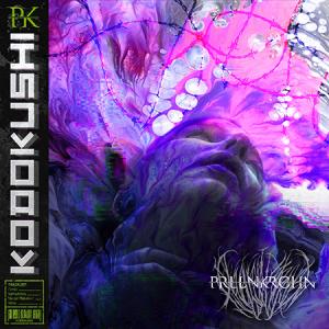 PRLLNKRCHN-Kodokushi-Artwork