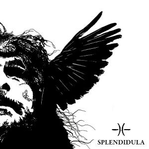 Splendidula-Somnus-Artwork