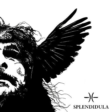 Splendidula-Somnus-Artwork